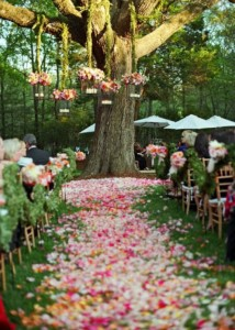 beautiful pink outdoor wedding aisle